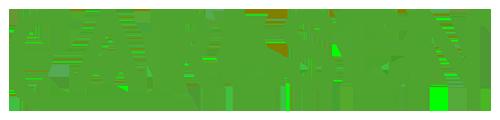 logo-carlsenverlag