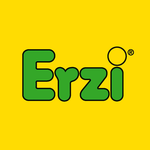 logo-erzi